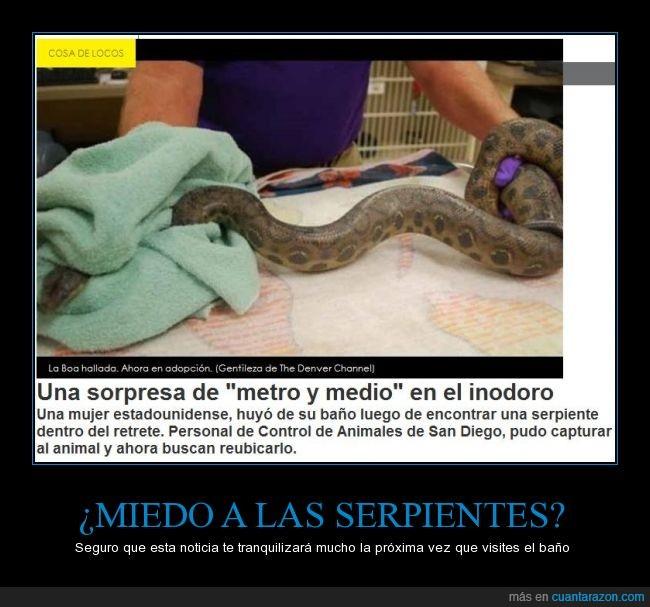 as_serpientes