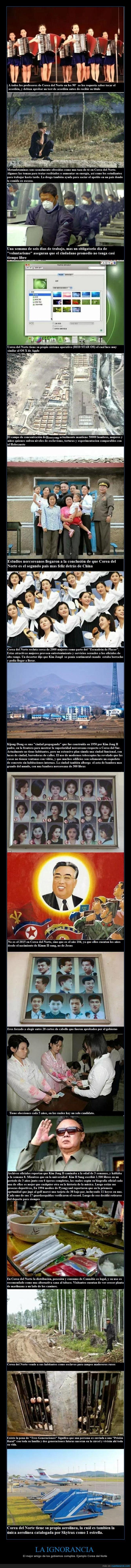 curiosidades corea