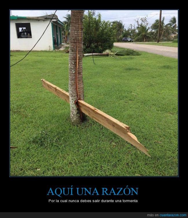 aqui_una_razon