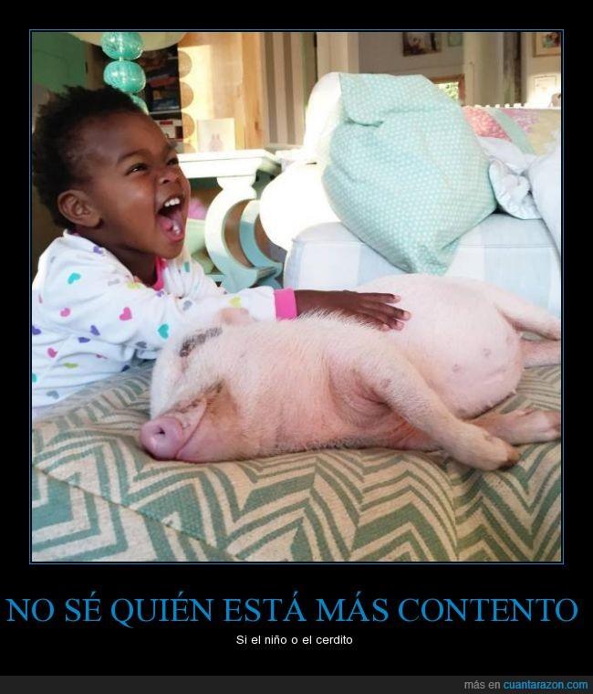 as_contento