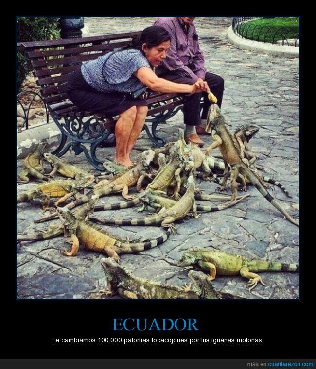 ay_que_firmar