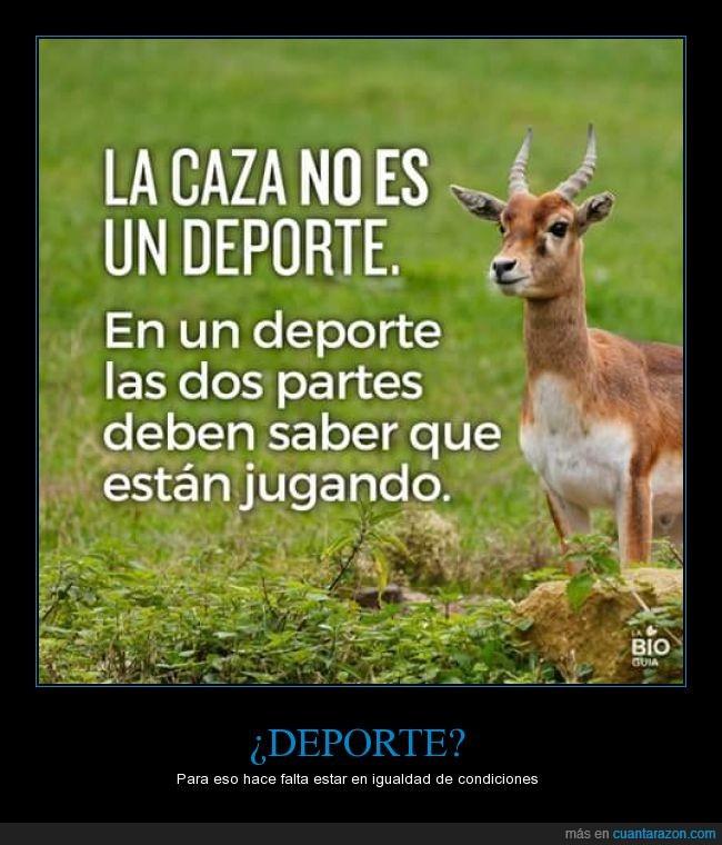aza_un_deporte