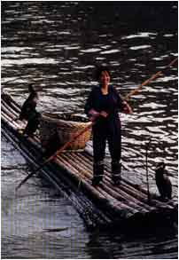 china barca