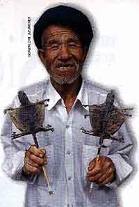 comida china lagartos