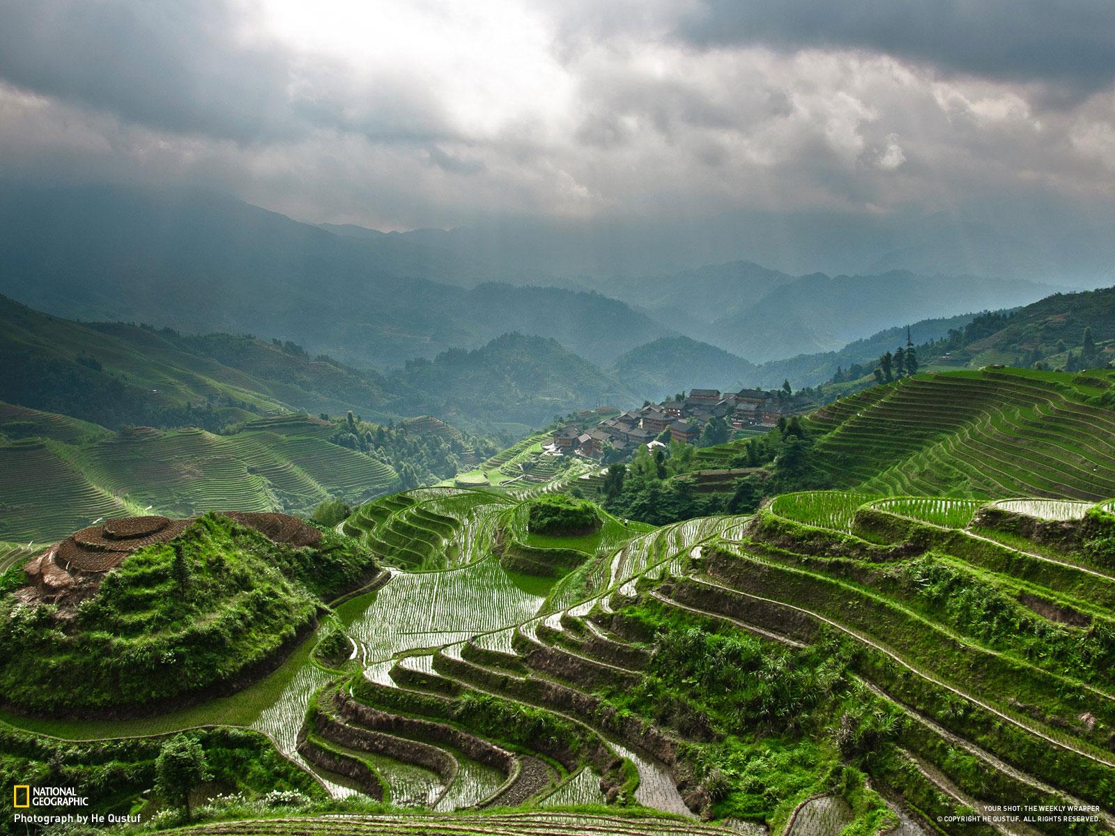 terrazas arroz china
