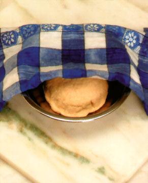 napolitanas fermentacion