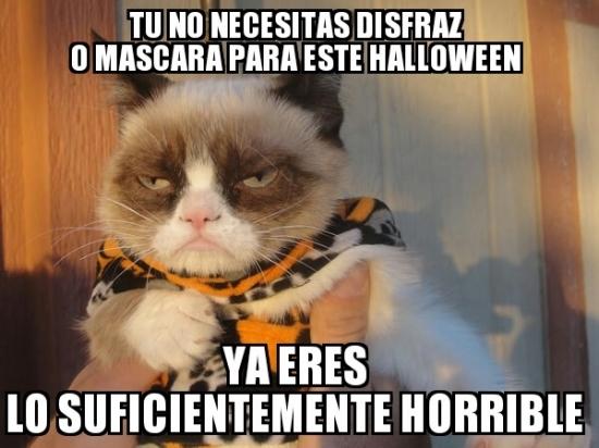 si_grumpy_cat_lo_dice
