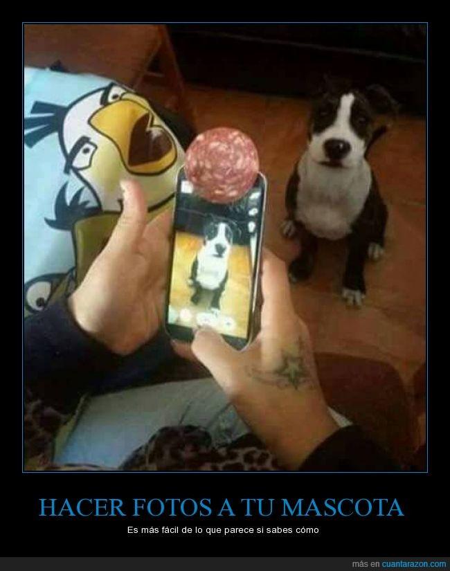 a b_mirando_a_la_camara