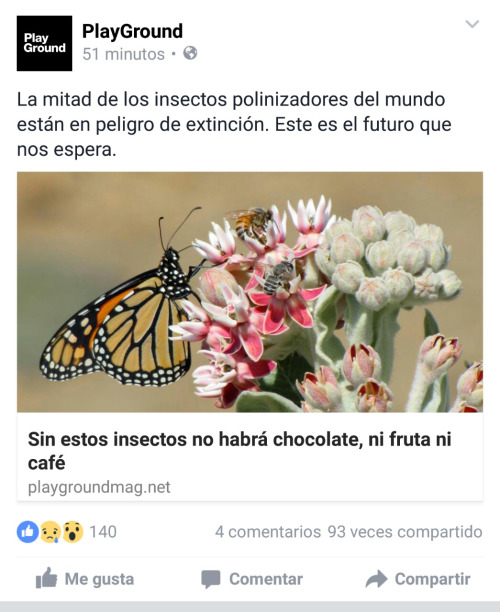 a b insecto