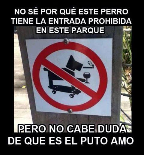 a b c perro