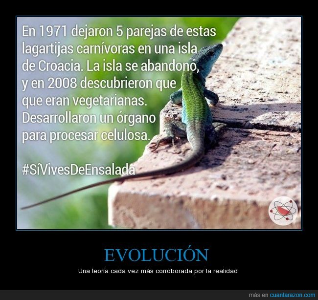 a b c quiere_la_evolucion