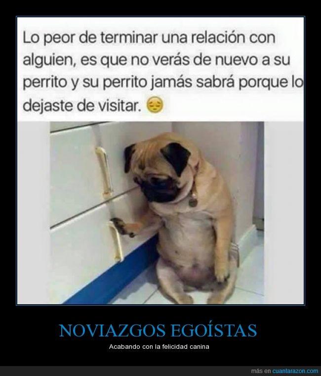 tiene_la_culpa_