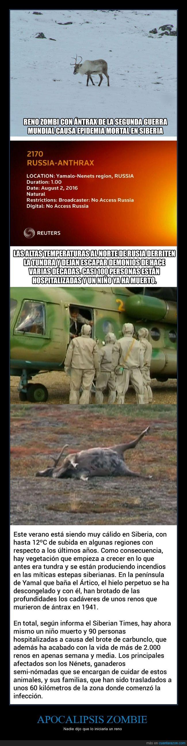 a b c causando_epidemia_mortal_en_siberia