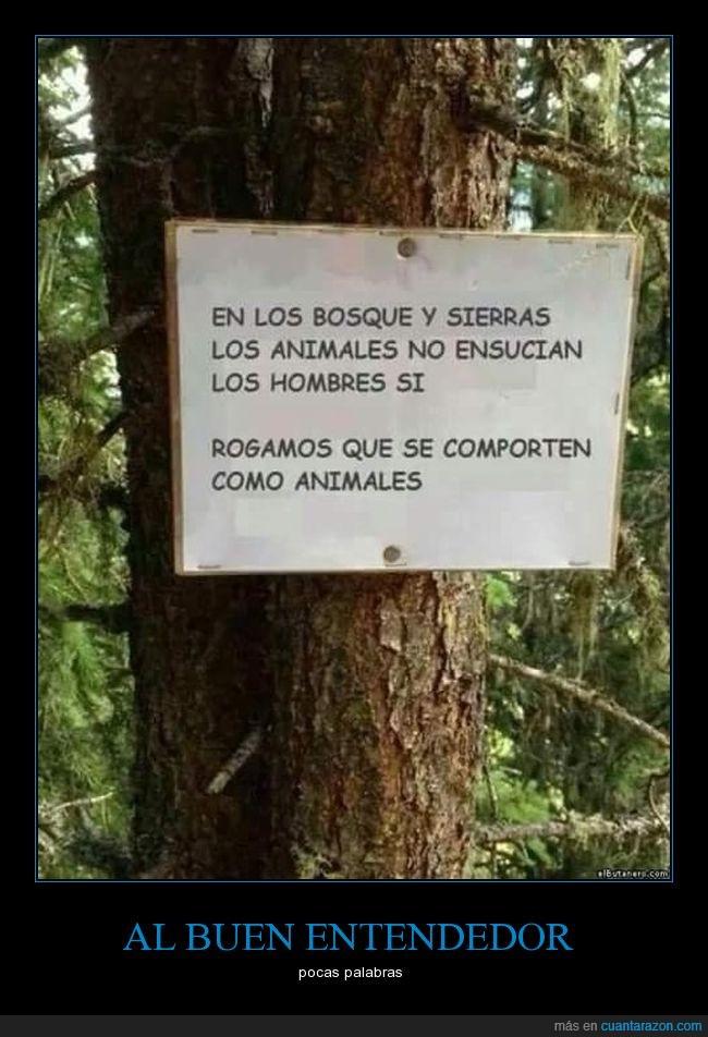 en_los_bosques