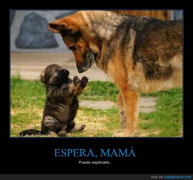 espera_mama