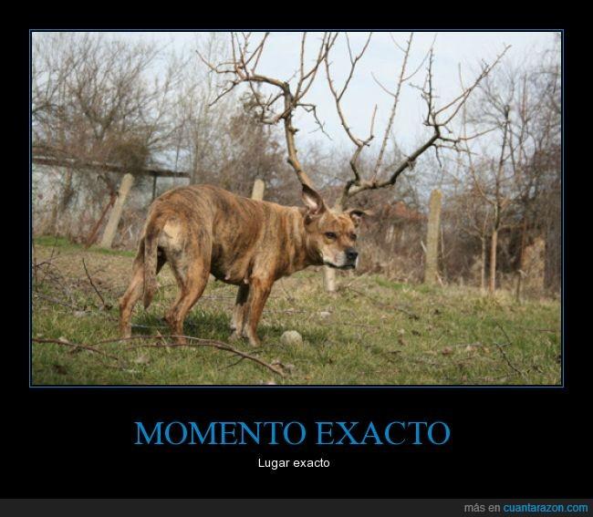 exacto_lugar_exacto