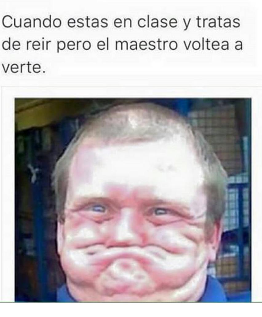 maestrooo