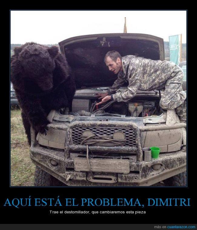 problema_dimitri