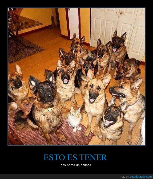 valiente_del_mes
