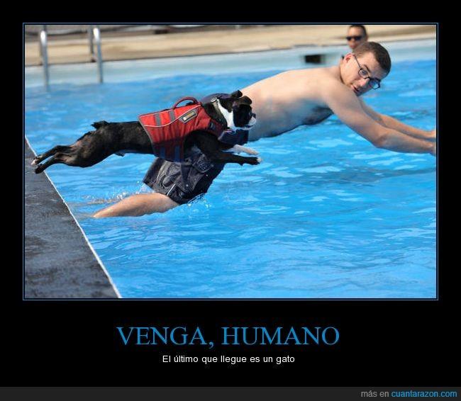 venga_humano