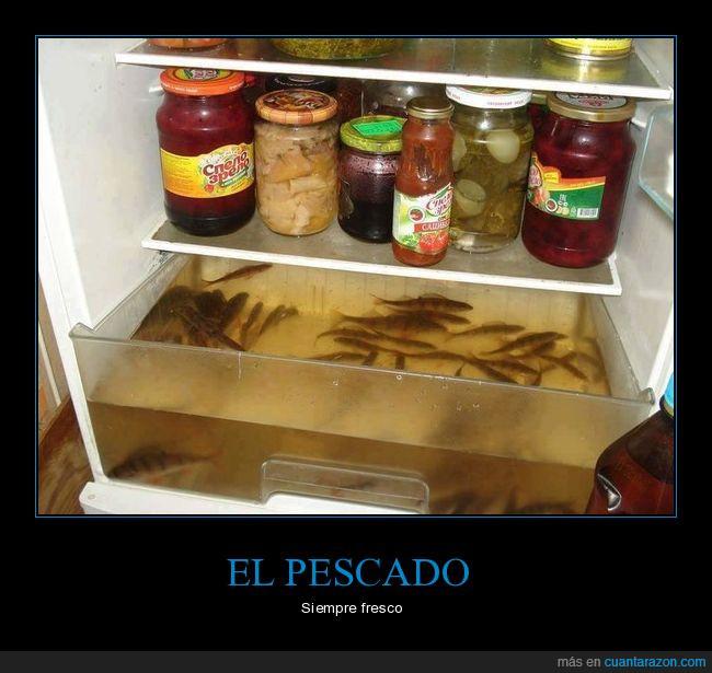 a b c siempre_fresquito