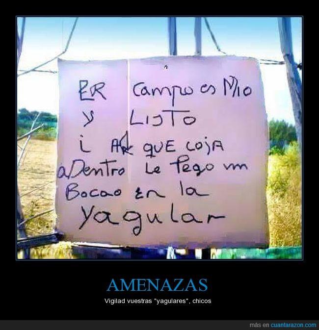 eso_y_me_cago
