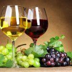 Tipos de vinos españoles