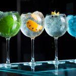 ¿Cómo hacer una cata de Gin Tonic en Madrid?