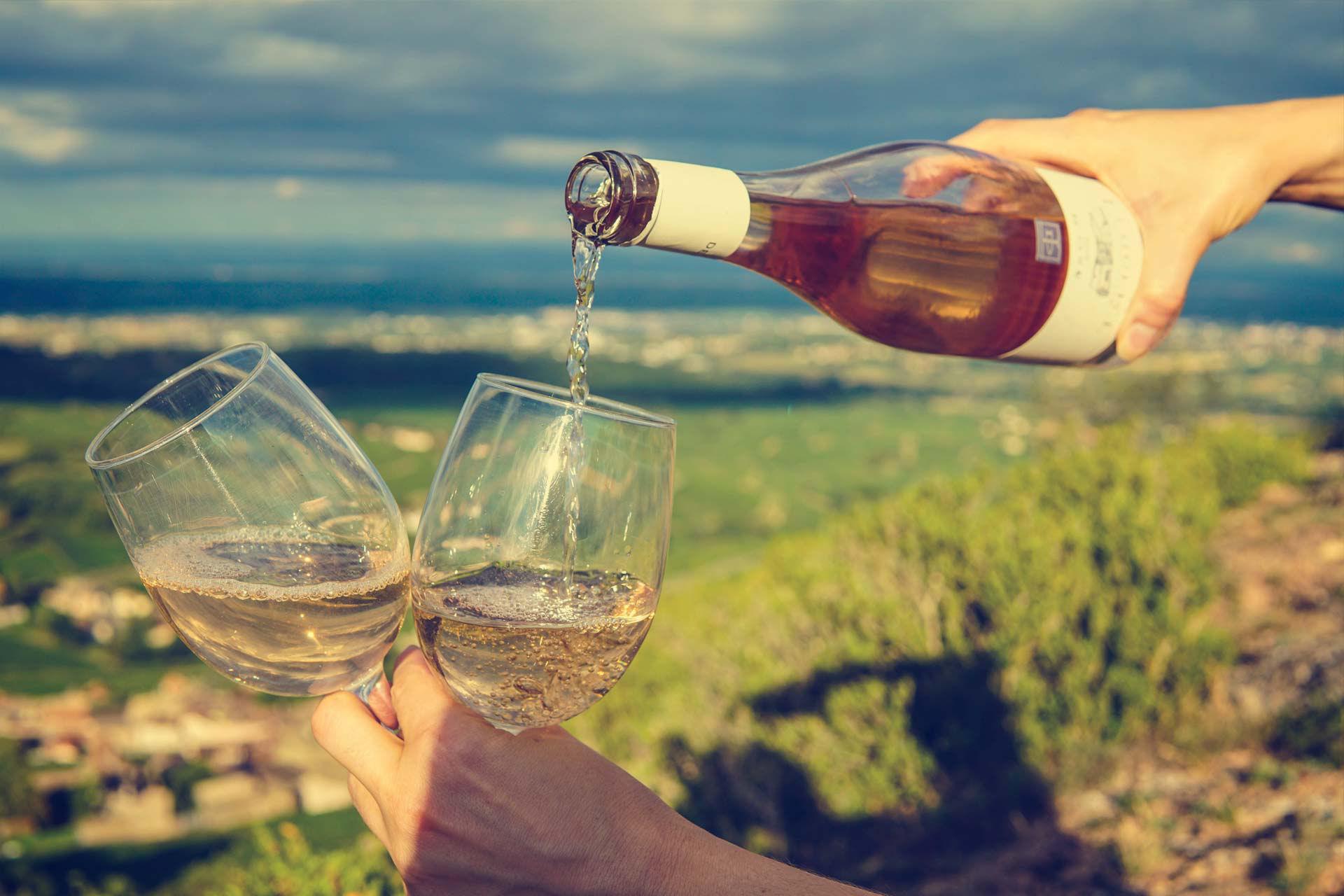 mejores vinos cadiz jerez