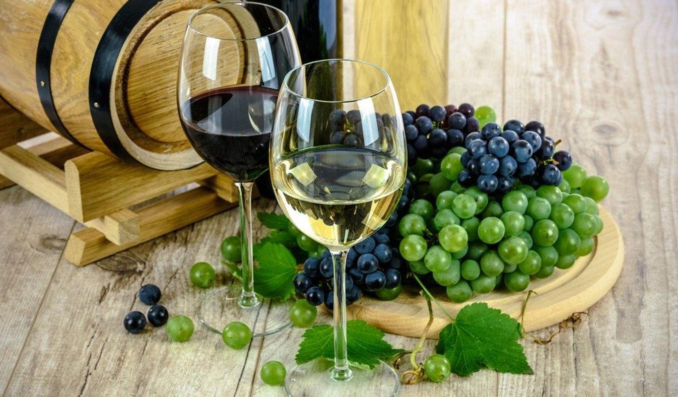 vinos cadiz jerez